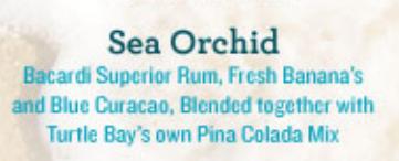 Sea Orchid